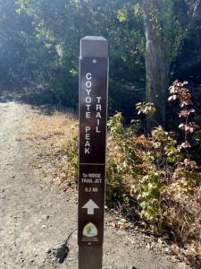 Coyote Peak Trail